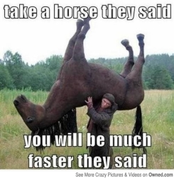 take_a_horse_they_said_540